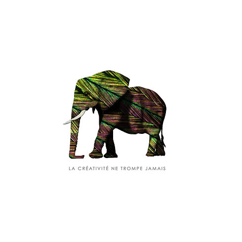 ELEPHANT_plume.jpg