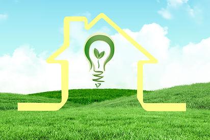 bulb-meadow-with-house.jpg