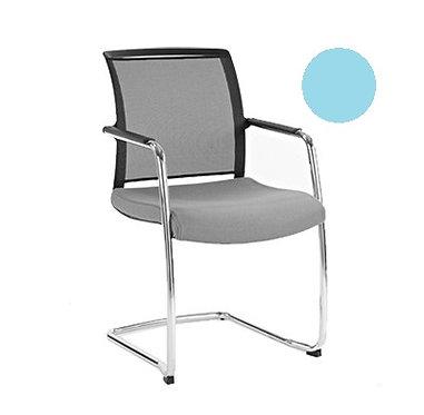 Meeting Chair - Coletta