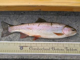 Fishing Report 8-14-15