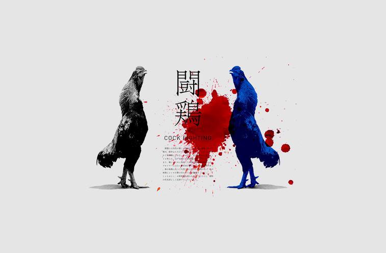 企画展「闘鶏」