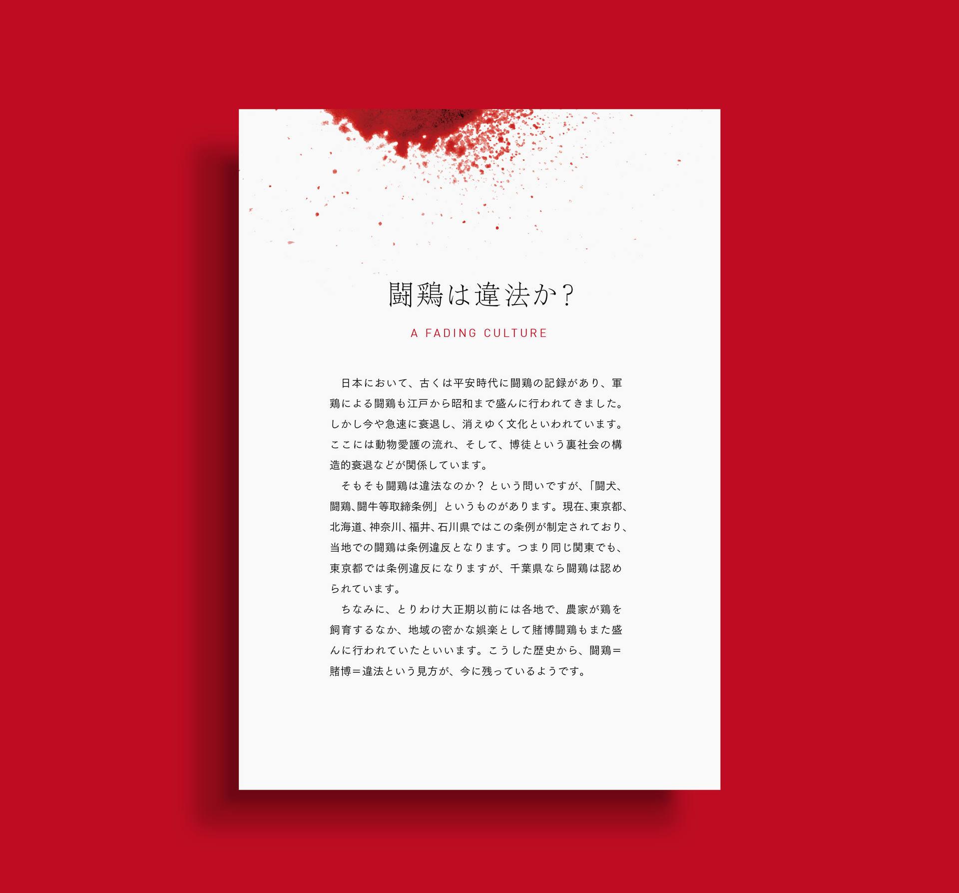 企画展「闘鶏」パネル