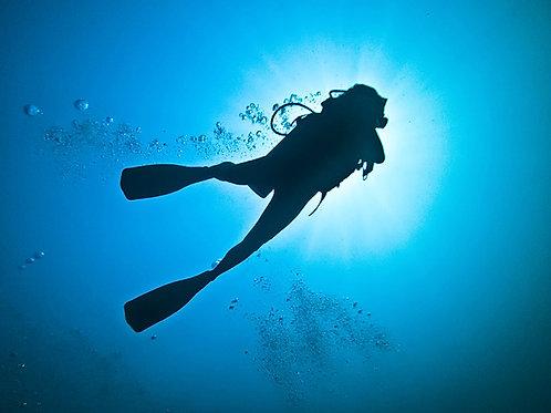 RAID Scuba Diver