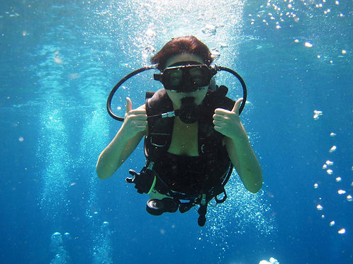 PADI Open Water Scuba Diver