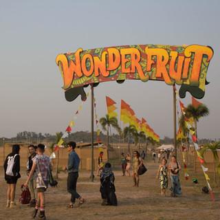 Under A Palm Tree Productions Client - Wonderfruit Festival - Event Photographer