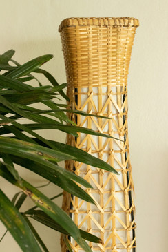 bamboo plant interior design photographe