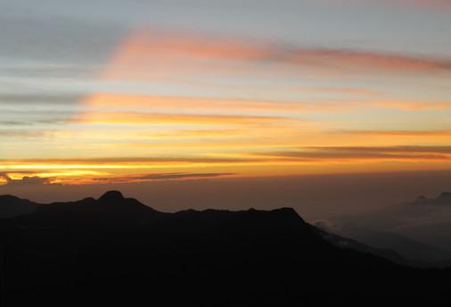 adams peak, sunrise, sri lanka, pilgrimage, travel photography, under a palm tree,