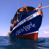 Asia's Angel - Our Scuba Boat