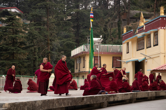 mcleod ganj buddhist monks india himalay