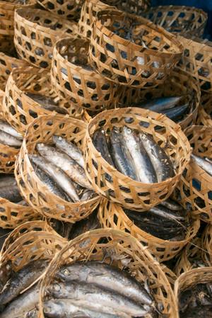 denpasar food market fish baskets travel photography