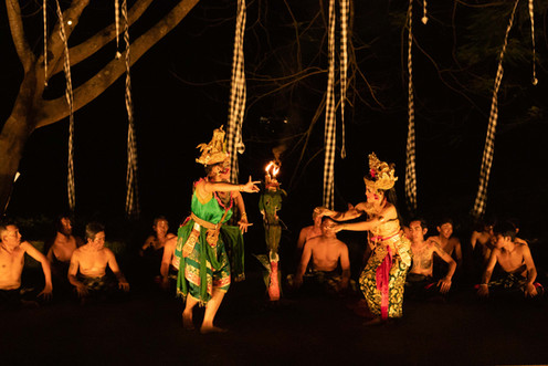 balinese dancer ubud bali traditional costume photographer under a palm tree