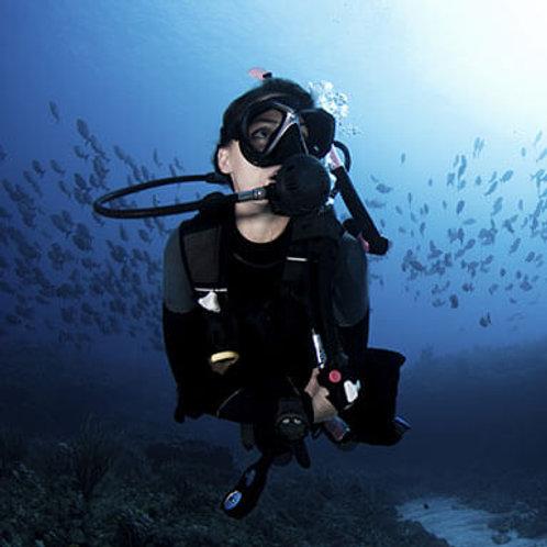 RAID Dive Master
