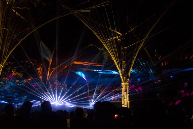 wonderfruit festival, pattaya, thailand, festival photographer, light show, photographer under a palm tree