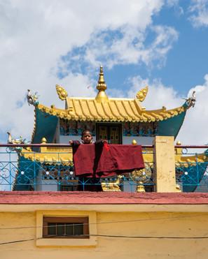buddhist child monk bir billing himchal