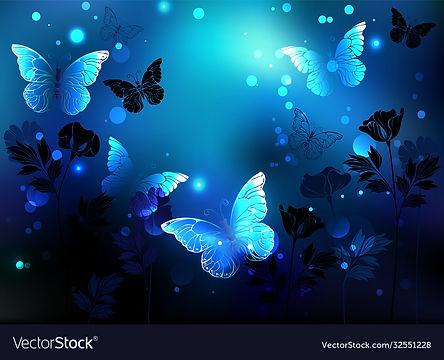 midnight-butterflies-vector-32551228.jpg