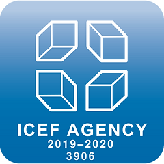 icef%20agency%20oficial%20dmc_edited.png