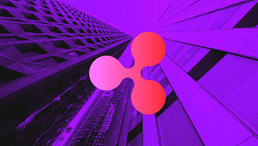 Does Ripple Really Need XRP? Bitcoin Bull Anthony Pompliano Nabs Interview With Brad Garlinghouse