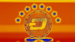 DASH Community Says NO to Venezuelan Proposals