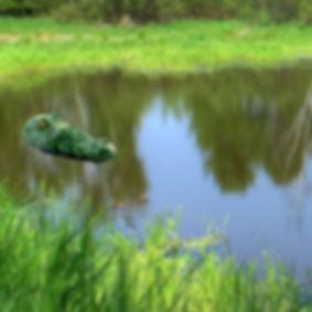 Riproduzione di una testa di coccodrillo, galleggiante