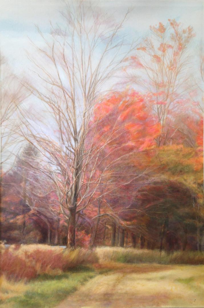 November Afternoon