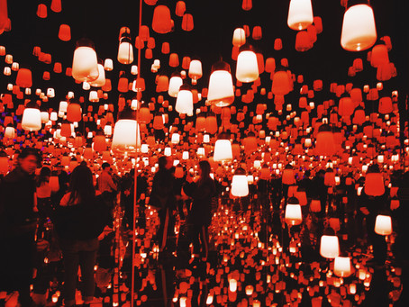 TeamLab Borderless - Digital Art Museum in Tokyo: What to Know Before You Go