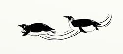 pinguinsglijden