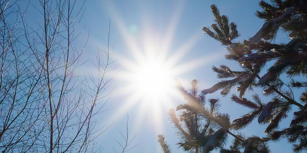 Winter Solstice Reiki Healing Circle