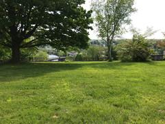A view from the Neighborhood Garden