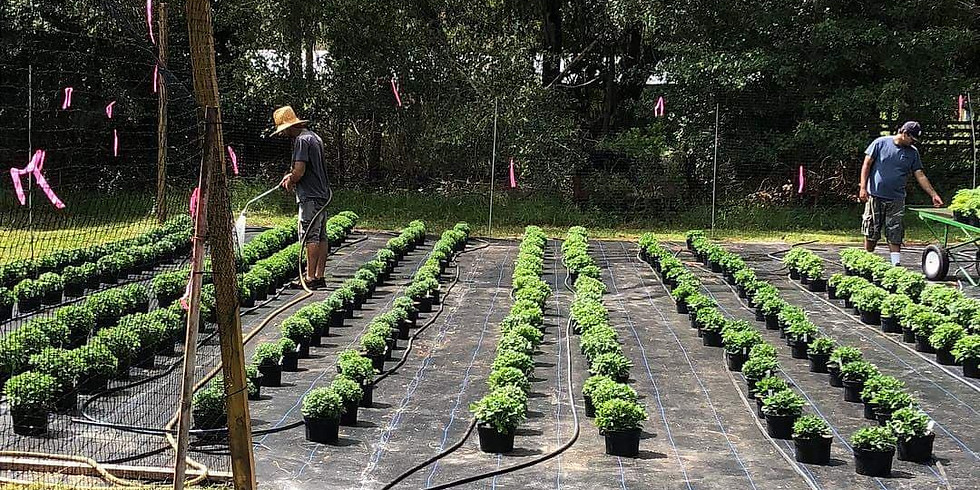 Vegetable Gardening for Vets, First Responders & Their Families
