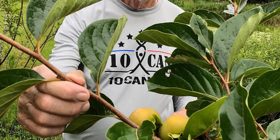 Introduction to Florida Gardening
