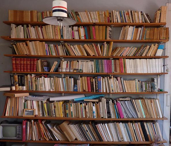 Biblioteca da Ameixoeira_edited.JPG