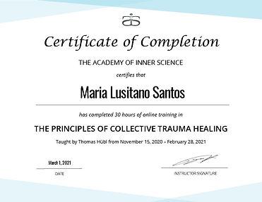 Principles_of_Collective_Trauma_Healing_