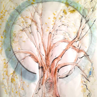 Telmo Silva,tree.jpg