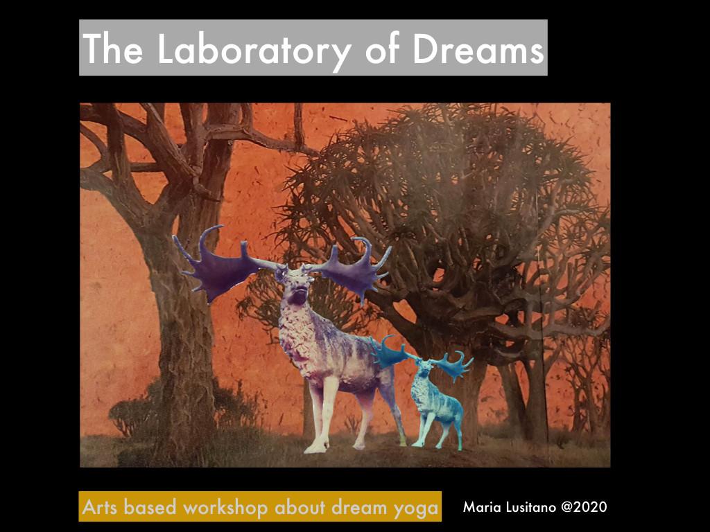 The laboratory of dreams.001.jpeg