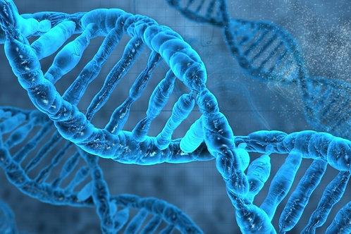 DNA Veil