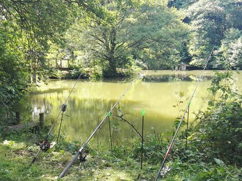 Angeln am großen Teich Hessen