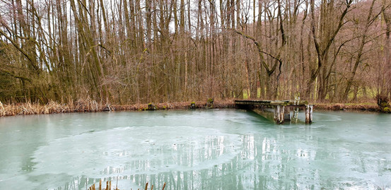 Winterteich (2).jpg