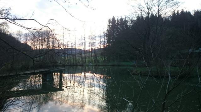 Winteransicht Blockhütte Hessen Angeln