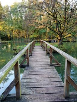 Blockhütte Hessen Angeln Brücke