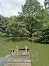 Steg am großen Teich