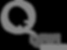 Spiral Dynamics Client Qiwi