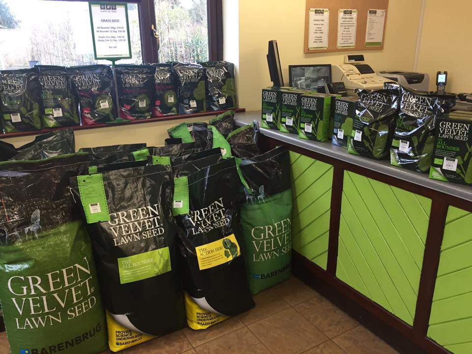 Grass seed in stock