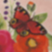 DITSY BUTTERFLIES_CLOSE UP.jpg