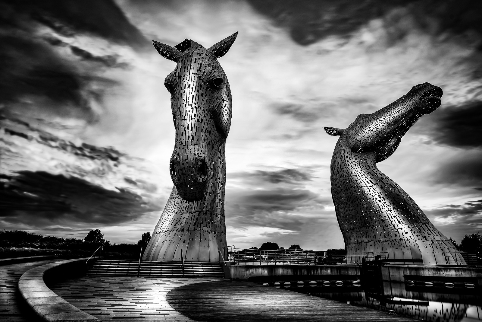 MONO - Horse Heads by Tom Dalzell (10 marks)