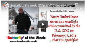 Under House Arrest as a Result of a Crime Committed by the CDC: by David Martin