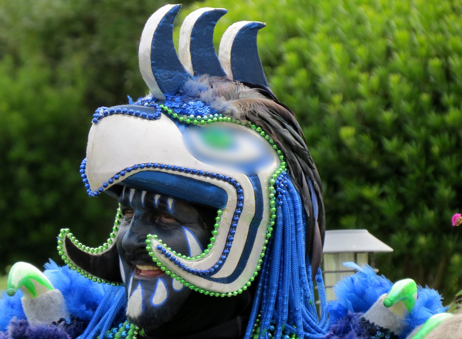 The Seahawk Rooster AKA Nick Goins_edite