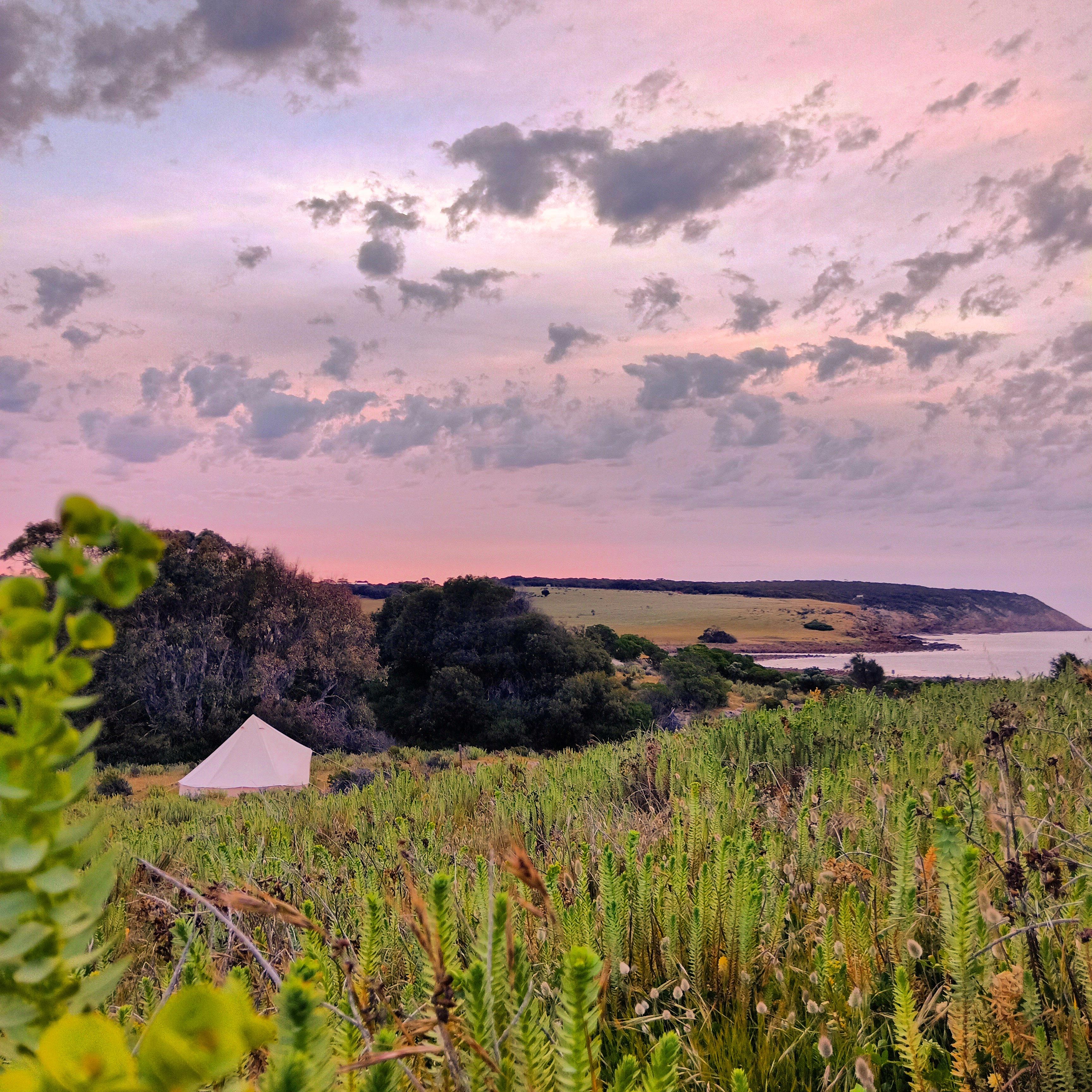 Stokes Bay Sunset