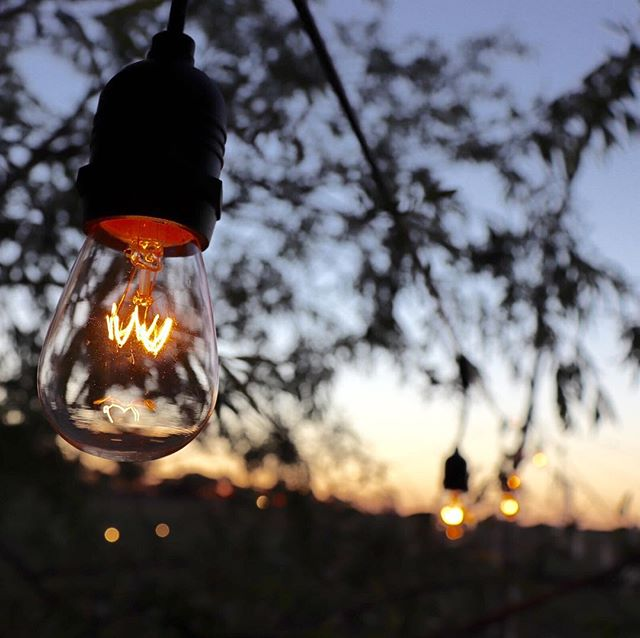 Wandering Souls Festoon lights