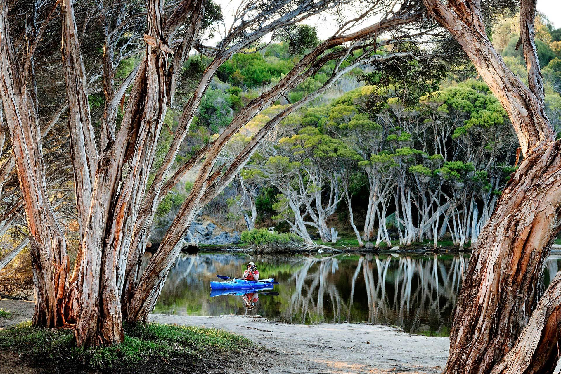 chapman river at Antechamber Bay