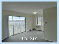 301 with number and border copy.jpg